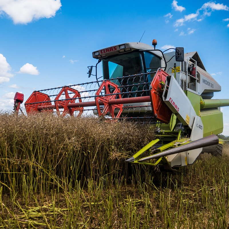 Results of the 2020 harvest in the East Midlands